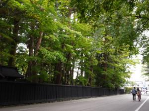 Kakunodate street